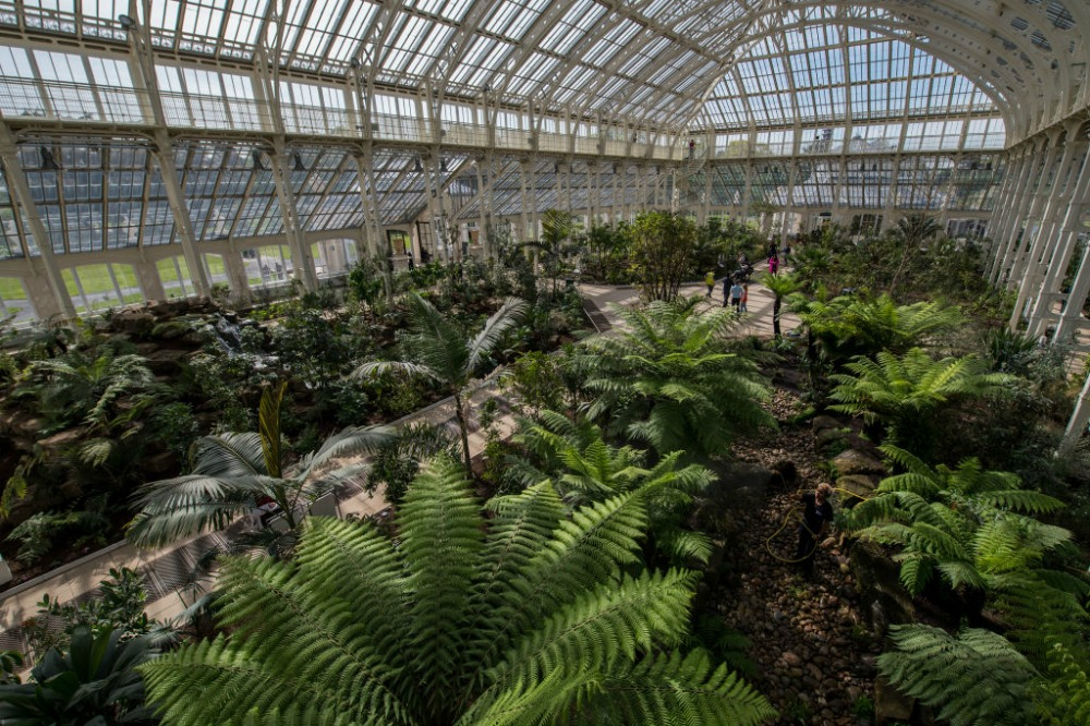 The glasshouse contains some of the world rarest and most threatened plants. Source: Getty.