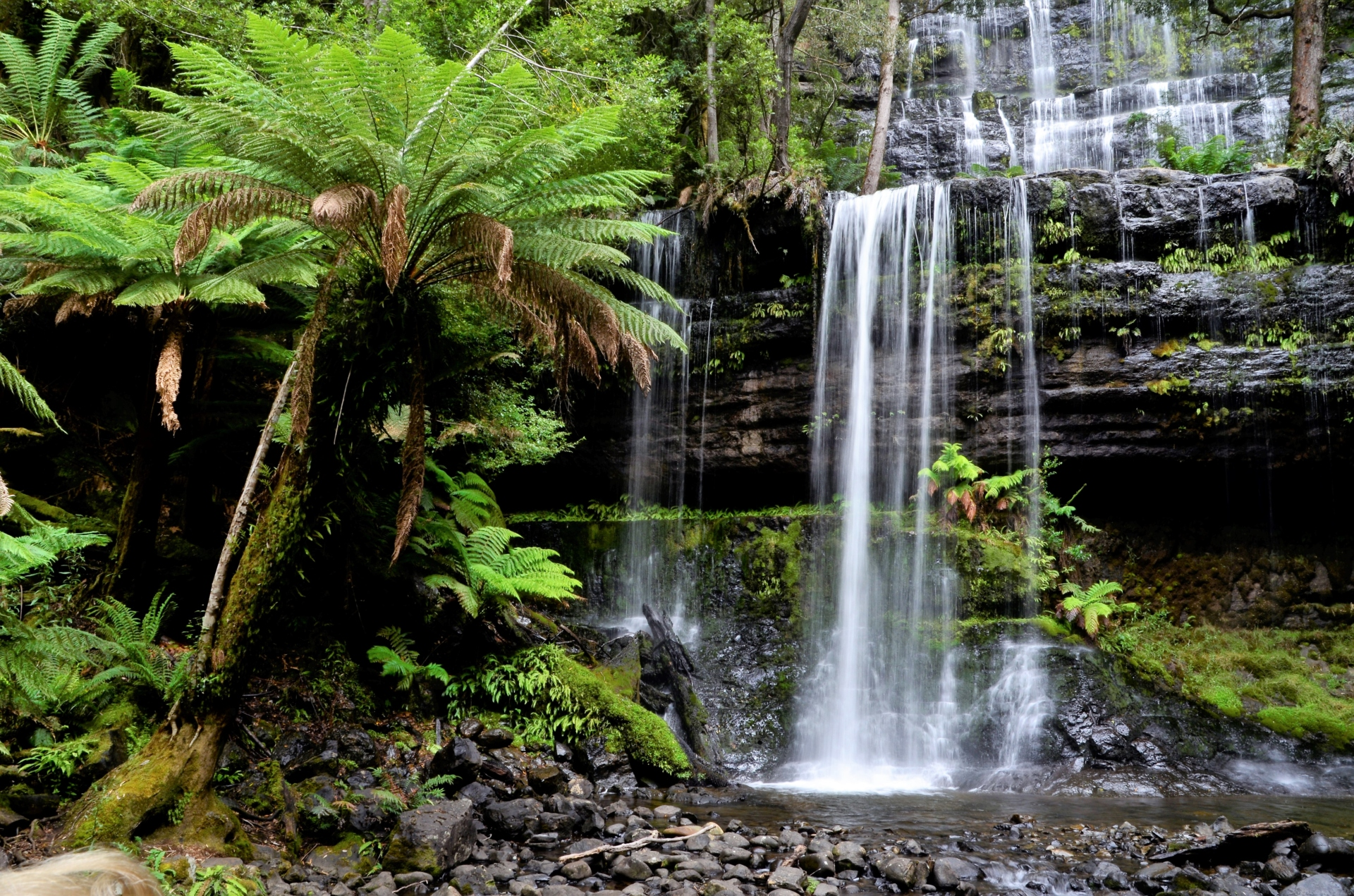 Russell Falls is a tiered cascade waterfall in Tasmania's Mount Field National Park. Source: Ian Smith